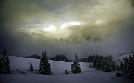 Winter - valley, beautiful, farms, shrouded, overcast, serene, clouds, pines, snow, bridge, nature, mountains
