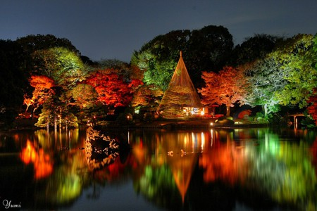 Japanese Garden At Night Lakes Nature Background Wallpapers on