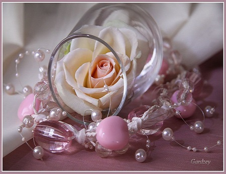 Delicate beauty - rose, delicate, pearls, beautiful, beads, pink, flower, white, glass
