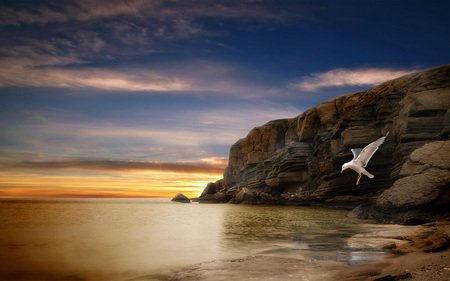 Simply Beautiful - beautiful, rocks, beauty, beach, freedom, sunset, colorful, sky, colors, free, lovely, birds, clouds, seagull, bird, nature, sea, peaceful, ocean