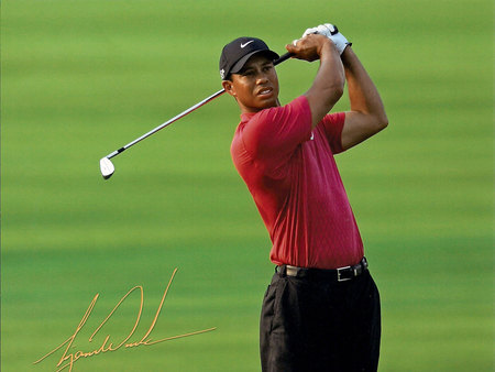 Tiger Wood - green, expert, the best, male, golf player, dress