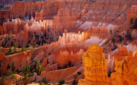 Rock Formation ... Wow - green, trees, orange, pink, formations, rock, coloured