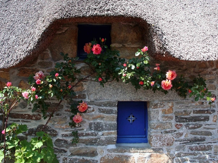heavenly  cottage - flowers, heavenly, stone, thatched, wall, cottage