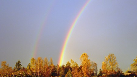 Evenings Double Rainbow - rainbow, leaves, washington, dusk, trees, firefox persona, widescreen, autumn, color, sun, fall