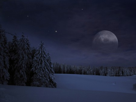 CHRISTMAS NIGHT MOON - icy, winter, clouds, blue, forests, trees, frozen, pines, moon, ice, christmas, snow, night, scenery, landscape, stars, moonlight, cold, seasons, sky