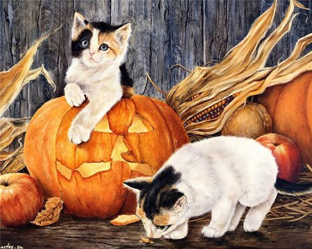 Are You Sure It's Pumpkin - kittens, stalk, corn, painting, hay, pumpkins