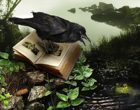 Fairy Tale - leaves, water, frog, artwork, crow, stones, fantasy, book