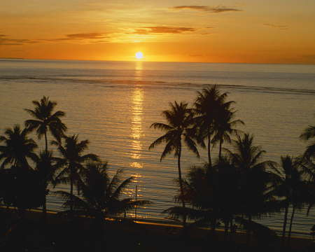 Hawaii nature - sea, sunset, hawaii, palm, nature