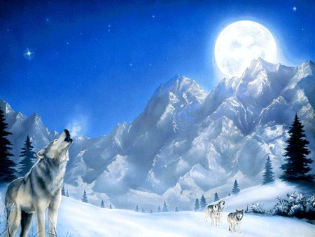 Wolves In Snow Winter Amp Nature Background Wallpapers On