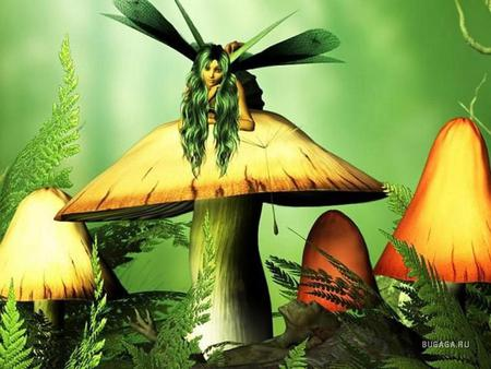 Fairy Mushrooms - green, other, fairy, fantasy, mushrooms