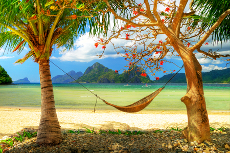 beach - respite, beach, water, net, paisa, roots, beaches, picture, tranquility, mounts, paisagem, repose, rest, leaf, paradise, sea, pillow, cocopalm, exotic, landscape, clear, palms, break, grass, calm, bay, mountains, grasslands, hq, quiet, sky, hdr, sand, branches, panorama, leaves, islands, sandy, photography, plants, image, trunks, nature, natural, canoe, coco, flowers, mains, rocks, bed, refreshment, relax, boulders, nice, vacation, trees, pc, lounge, serene, wallpaper, desktop, clouds, fullscreen, hammock, hills, ocean, pleasant, cool, beautiful, relaxation, beauty, cholines, photo, stand, boats, stones, coconut, palm, leisure, sleep, background, coconut-tree