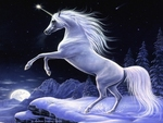 Moonlight Magic Unicorn-Sharlene Lindskog