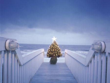 Christmas By The Sea - Beaches & Nature Background Wallpapers on ...
