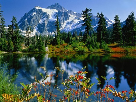 Mountain View - lake, flower, blue, mountain, nature