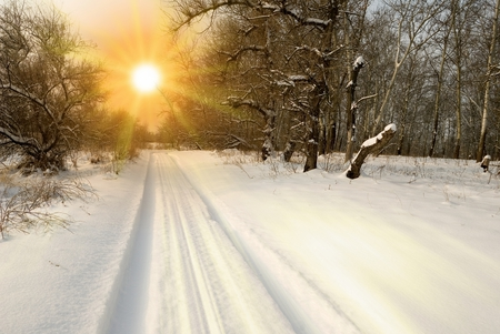sunset - cool, rays, beautiful, season, sky, path, landscape, nice, sunset, snow, forest, sun, nature, winter