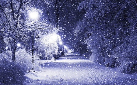 Beautiful Winter - glow, beautiful, path, tree, beauty, magical, night, falling snow, cold, snowflakes, snow, forest, picture, alley, snowy, trees, season, pathway, lights, lovely, lanterns, empty, street lamps, light, park, nature, peaceful, winter
