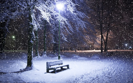Winter Night - beautiful, blue, pretty, tree, beauty, night, cold, walk, snowflakes, snow, forest, bench, other, lights, lovely, flakes, lantens, light, park, nature, peaceful, winter