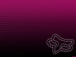 Pink Fox Racing Wallpaper