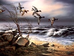 BlueBill point, by Terry Redlin