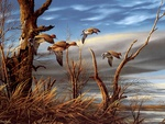 Aging Shoreline, by Terry Redlin