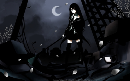 The end where it begins - sword, moon, huka, sexy, dark, brs, death scythe, beauty, anime girl, cute, sakura petals, hot, beautiful, darkness, black rock shooter