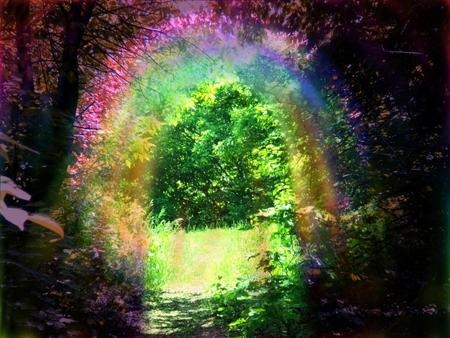 magic woods - green, forest, magic, rainbow