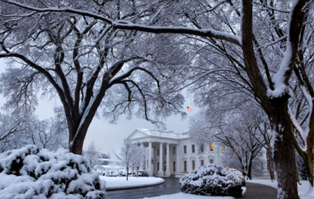 Snowy White House Driveway - white house, columns, cold, snow, white, driveway, flag, us, trees, black, brown, washington dc, president, district of columbia, bushes, city, winter