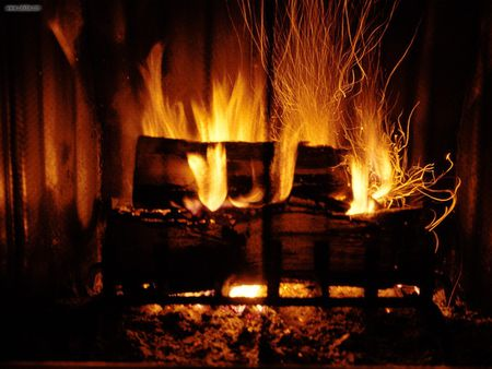 Roaring Fire - wood, fire, roar, hot, warm, awesome