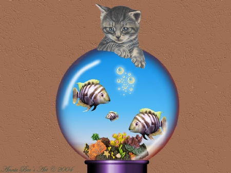 Just Looking - flowers, fish, other, cat