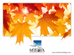 mataora autumn