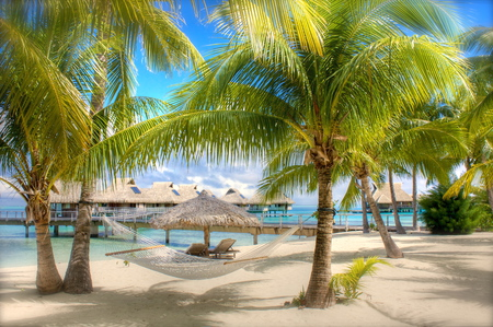 Beach - cool, photography, blue, season, peaceful, coast, nice, nature, sand, resort, house, hammock, villa, sun, vacation, bungalows, calm, shore, water, houses, sunlight, exotic, place, tropical, lounge, view, islands, wet, palms, beauty, summer, relax, sea, sunshine, beautiful, beach, sky, ocean