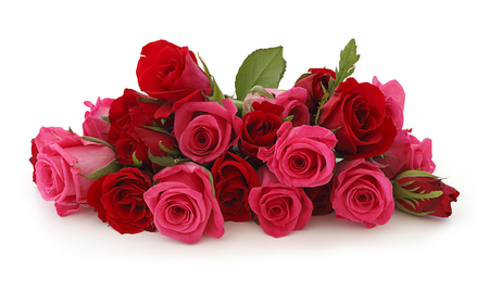 Roses - rose, cool, flowers, beautiful, pink, harmony, flower, nice, photography, roses, photo, elegantly, red, bouquet