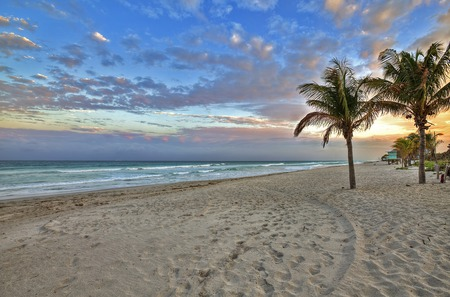 Sunrise - tropical, beautiful, beauty, beach, paw, footprints, sunrise, palm, trees, colorful, sky, colors, coast, waves, lovely, sand, clouds, nature, sea, peaceful, ocean