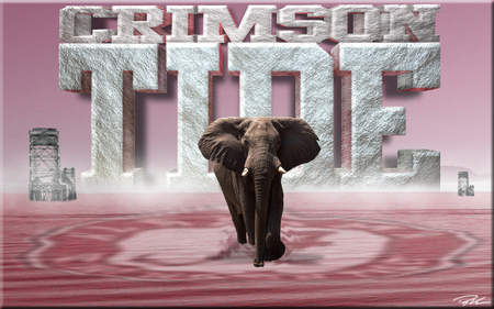ALABAMA CRIMSON TIDE - football, crimson tide, alabama, ncaa
