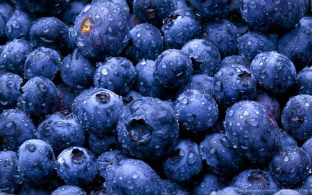 Blueberries - colour, spring, blue, exotic, wall, dark, fruit, fresh, wallpaper, photography, image, fruits, photo, macro