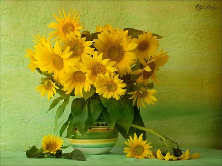Sunflowers - flowers, delicate, petals, beautiful, pretty, lovely, vase, yellow, nice, still life, sunflowers