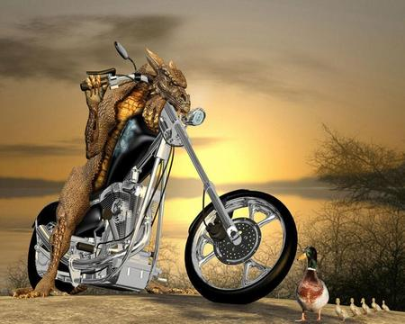 Good Driver - splendor, motorcycle, bike, animals, beautiful, landscapes, motorcycles, traffic, aliens, funny, bikes, fantasy, entertainment, vehicles, giveway, transport, colors, dragon, birds, chopper, horizons, world, 3d, ducks, driver, dragons