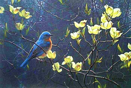 Blue birds n blooms - bird, blooms, branch, yellow, blue bird