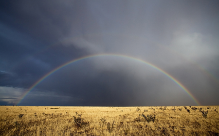 Light and Rain - deserts, clouds, storm, nature, rainbow