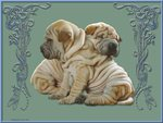 Two wrinkled friends