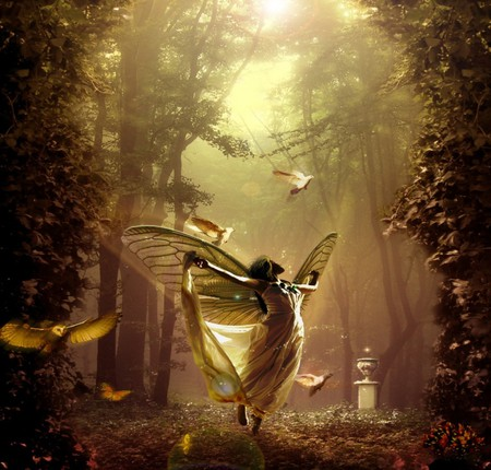 ENCHANTED FAIRY - wings, beautiful, sunlight, enchanted, magic, night, birds, female, butterfly, fairy, forest, fantasy, doves