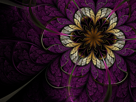 Abstract - cool, beautiful, abstract, colors, harmony, purple, flower, nice, violet