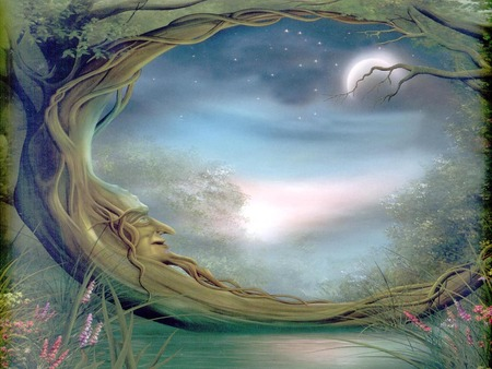 Mystical forest - forest, mystical, fantasy, fairy