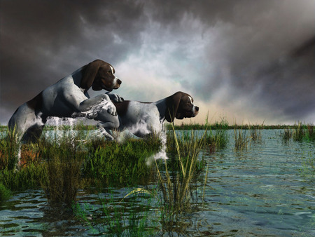 hunting pair - dogs & animals background wallpapers on desktop