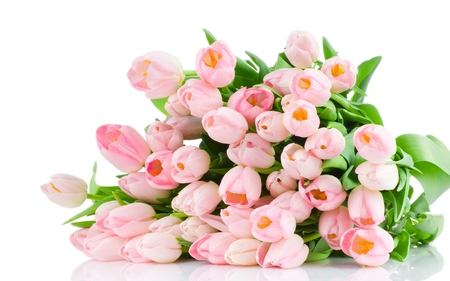 Tulips - flowers, spring, pink tulip, beautiful, pink, pretty, romantic, beauty, for you, tulip, green, with love, colors, lovely, tulips, pink tulips, photography, still life, nature, bouquet, romance