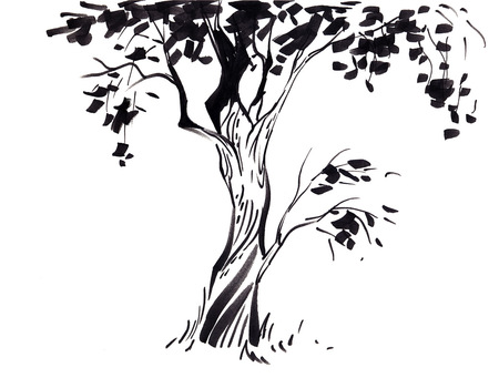Tree forests nature background wallpapers on desktop for Cute tree drawing