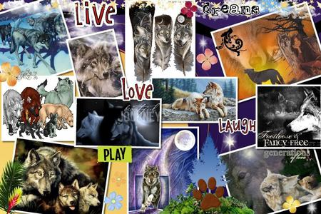 COOL WOLF COLLAGE - Collages & Abstract Background Wallpapers on ...