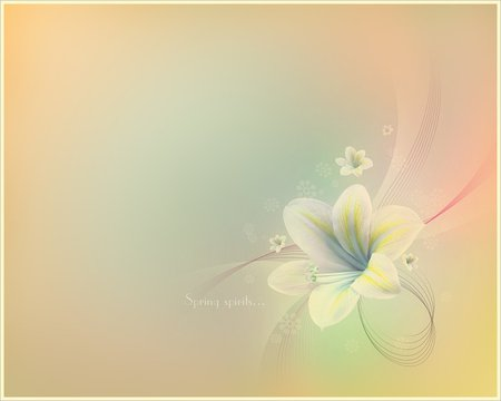 soft flower flowers amp nature background wallpapers on