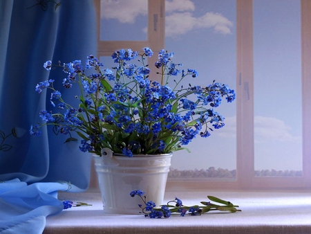 Blue Flowers - flowers, window, petals, beautiful, blue, art, pretty, romantic, view, beauty, for you, flower, with love, bucket, still live, lovely, tin, tender, buttons, blue flowers, photography, still life, pail, life, nature, store, romance