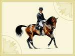 Dressage Horse and Rider F5